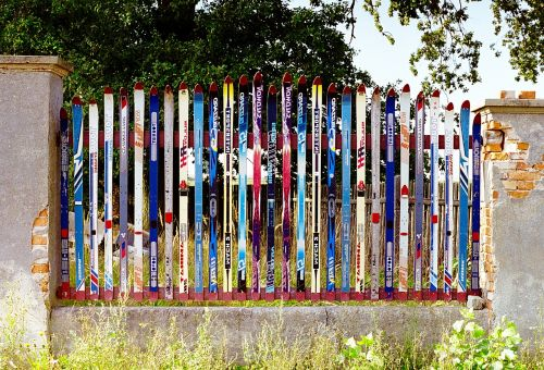 the fence skis fencing