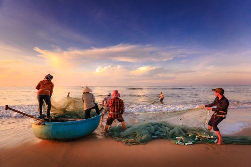 the fishermen fishing the work