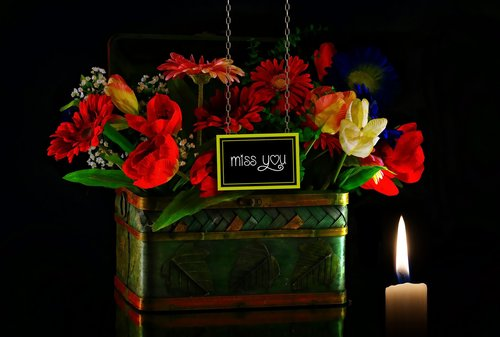 the flowers  dedicated  memory