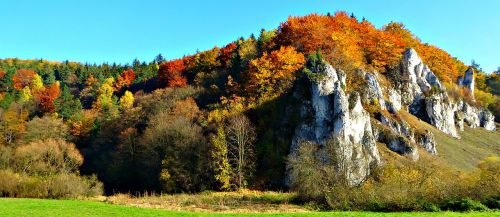 the founding fathers poland the national park