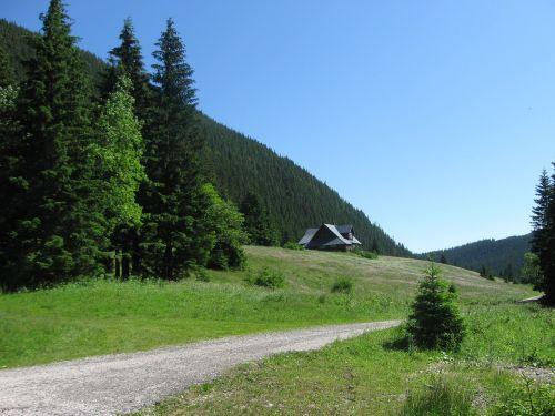 the giant mountains giant mine path