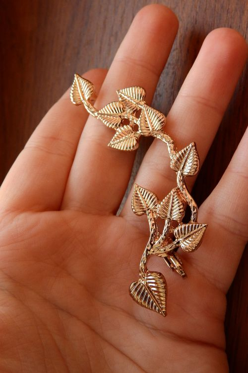 the golden jewel in my hand a jewel in the palm of your hand big earrings