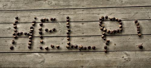the inscription floor chestnuts