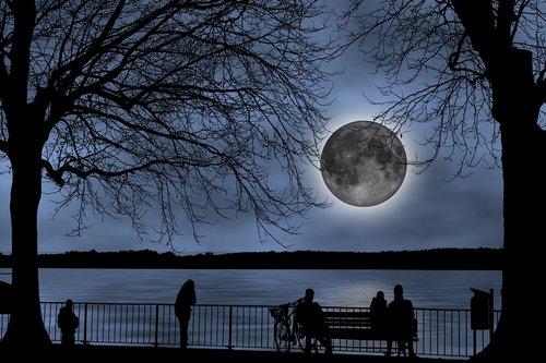 the moon  looking at the moon  full moon