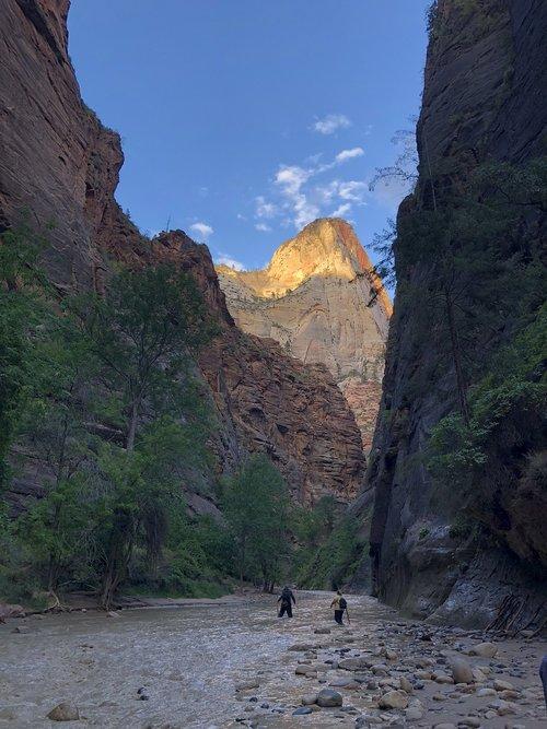 the narrows  canyon  river