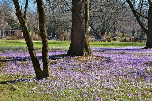 the old botanical garden munich bavaria