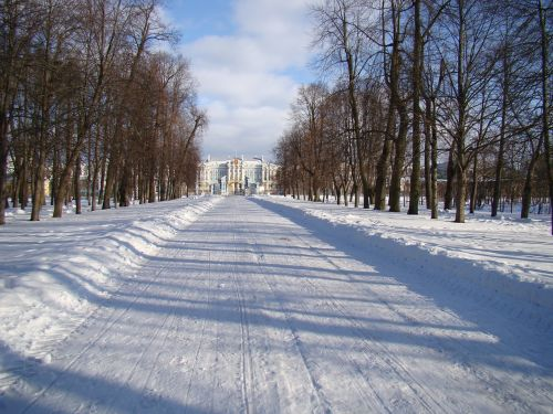 the palace ensemble tsarskoe selo russia alley