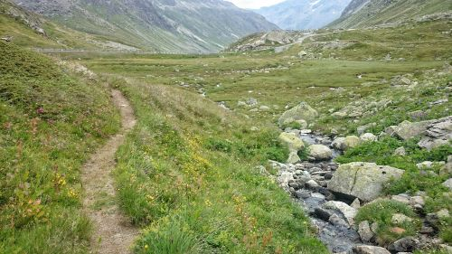 the path relax mountain stream