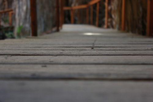 the path way footbridge