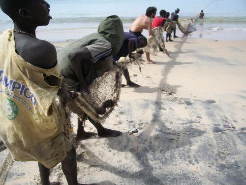 the peach senegal fishermen