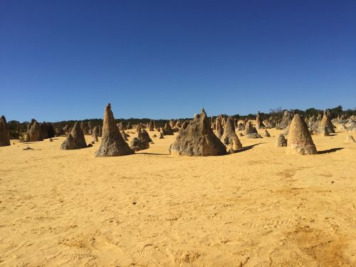 the pinnacles australia nambung national park
