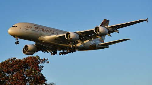 the plane  aircraft  jet