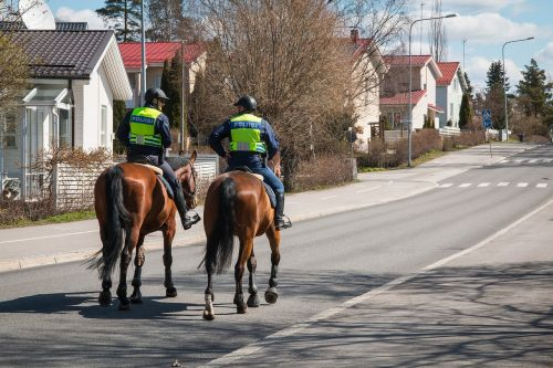 the police finnish mounted police