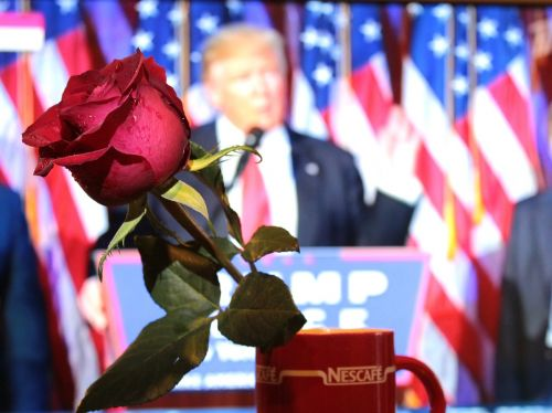 the president of the congratulation rose