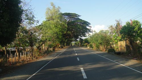 kelias, kelionė, vairuoja, vieta, ilgas & nbsp, kelias, ilgai & nbsp, vairuoti, medžiai, kelias