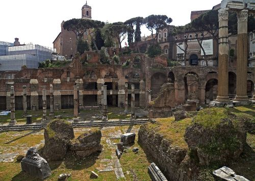 the roman forum the ruins of the monuments