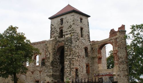 the ruins of the castle view