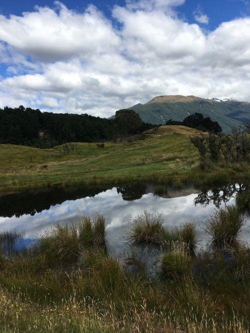 kraštovaizdis,Naujoji Zelandija,žiedai