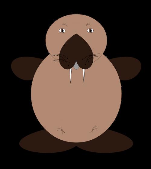 the sea lion animals mammal