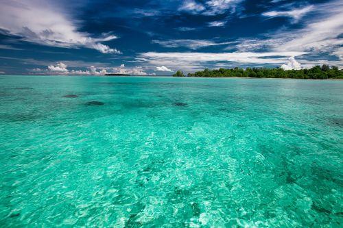 the shallow sea tropical kojima