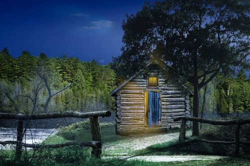 the shed  forest  night