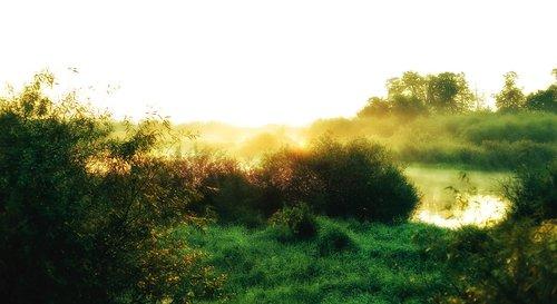 the sun  east  nature