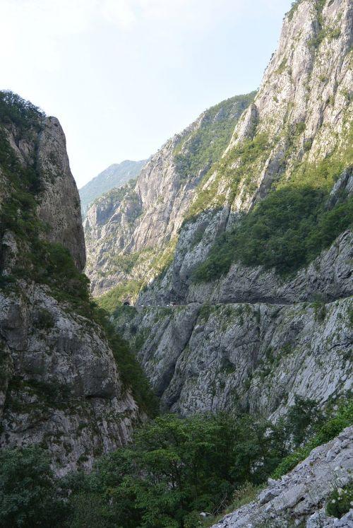 the tara river montenegro canyon