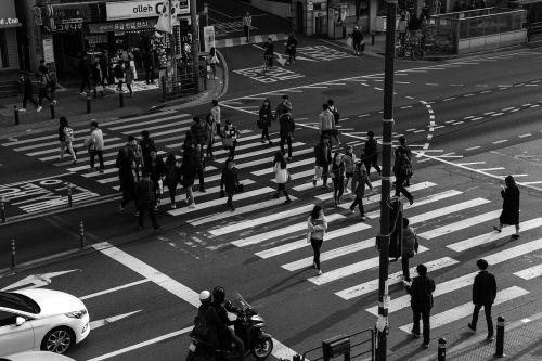 the traffic light pedestrian crossing people