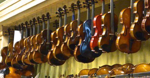 The Violin Store
