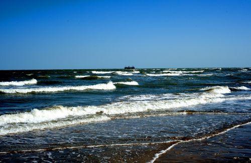 bangos,papludimys,purkšti