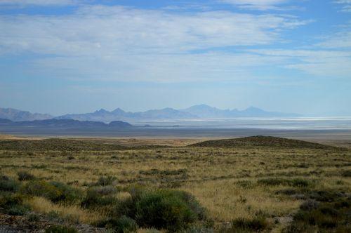 the wilderness wilderness western