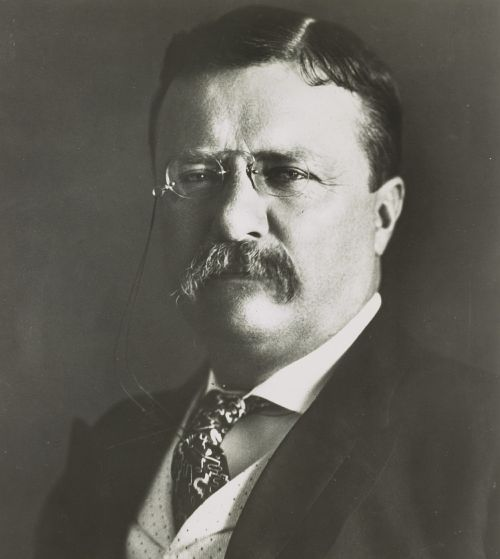 theodore roosevelt politician man