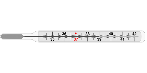 thermometer medical clinical thermometer