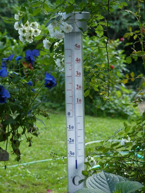 thermometer degree temperature