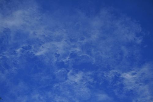 Thinly Dispersed White  Cloud