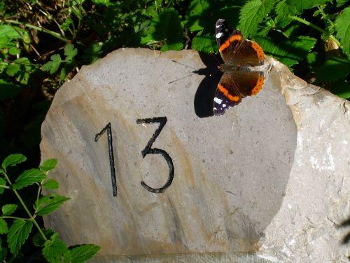 thirteen butterfly milestone