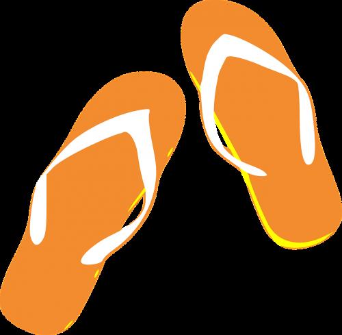 thongs flip flops sandals