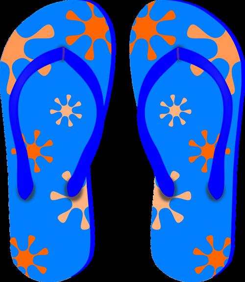 thongs flip-flops sandals