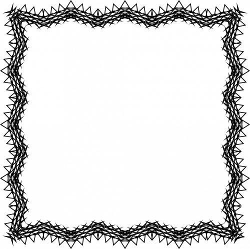 Thorny Frame