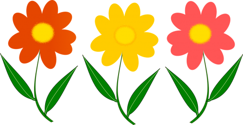 three flower plant vector image