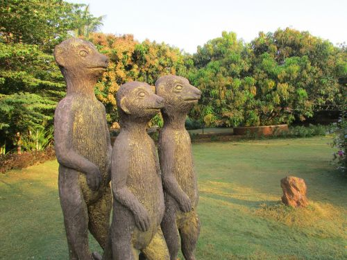 three mongoose bronze dharwad