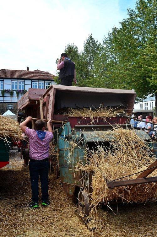 thresher  grain threshing  historically