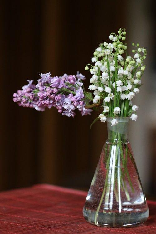 thrush  lilac  bouquet