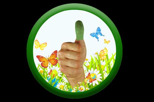 thumb  green thumb  thumbs up