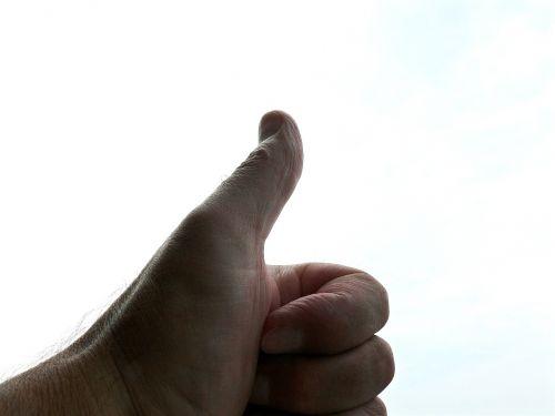 thumb finger finger nail