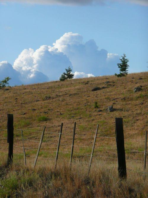 thunderstorm dark clouds towering cumulus