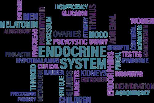 skydliaukė,endokrininė,diabetas,liauka,sindromas,liga,vėžys,nuovargis,kiaušidės,kiaušidžių,тимус,hipofizės,antinksčių,kasa,žodis,žodis debesis,žodis,nemokama vektorinė grafika