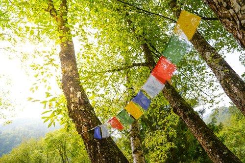 tibet  flags  buddhism
