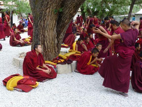 tibet sera monastery jhasa