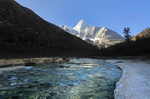 tibetan inagi yang maiyong